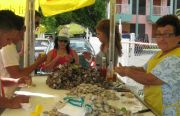 Oyster and Clam Vendor in Boqueron