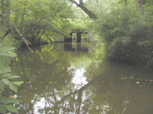 Culvert and downstream scour pool
