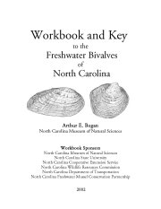 Workbook and Key to the Freshwater Bivalves of North Carolina